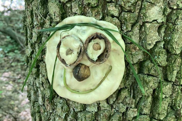 Kid-Fit-Fun®Bewegte Waldpädagogik